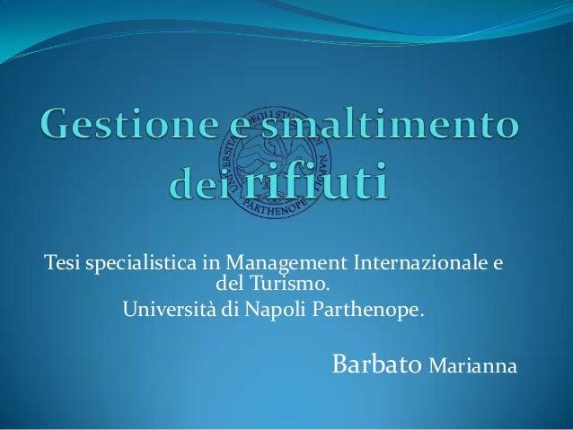 Tesi specialistica in Management Internazionale e del Turismo. Università di Napoli Parthenope.  Barbato Marianna