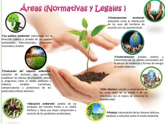 Gestion Y Politica Ambiental