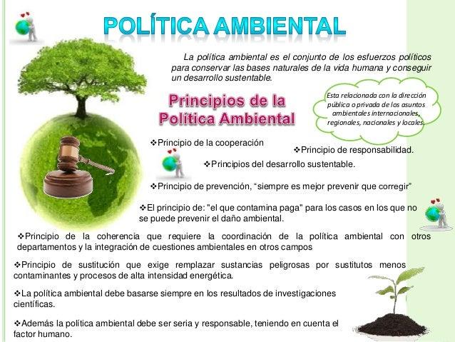 Gestion y politica ambiental for La politica internacional
