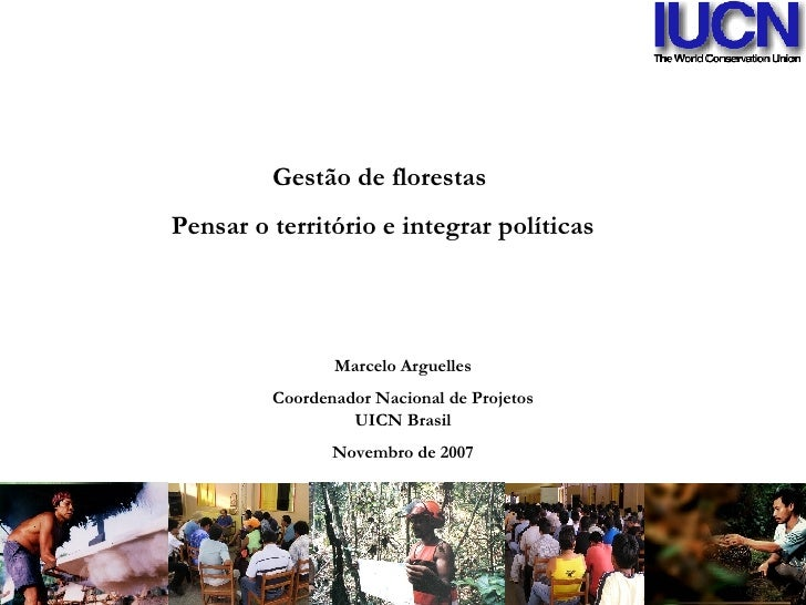 Marcelo Arguelles Coordenador Nacional de Projetos UICN Brasil Novembro de 2007 Gestão de florestas  Pensar o território e...