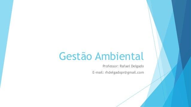 Gestão Ambiental Professor: Rafael Delgado E-mail: rhdelgadopr@gmail.com
