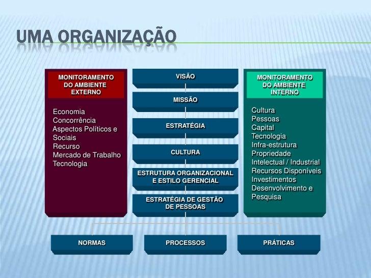 UMA ORGANIZAÇÃO    MONITORAMENTO                  VISÃO              MONITORAMENTO     DO AMBIENTE                        ...