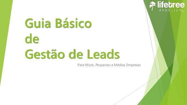 Guia Básico de Gestão de Leads Para Micro, Pequenas e Médias Empresas