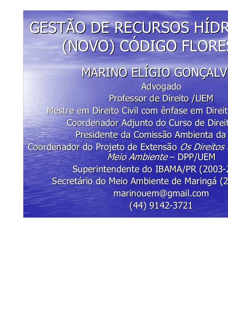 GESTÃO DE RECURSOS HÍDRICOS E O    (NOVO) CÓDIGO FLORESTAL            MARINO ELÍGIO GONÇALVES                            A...