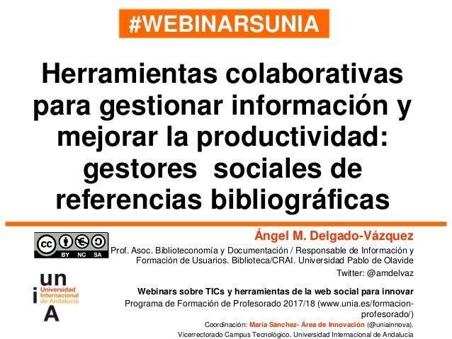 #WEBINARSUNIA Ángel M. Delgado-Vázquez Prof. Asoc. Biblioteconomía y Documentación / Responsable de Información y Formació...
