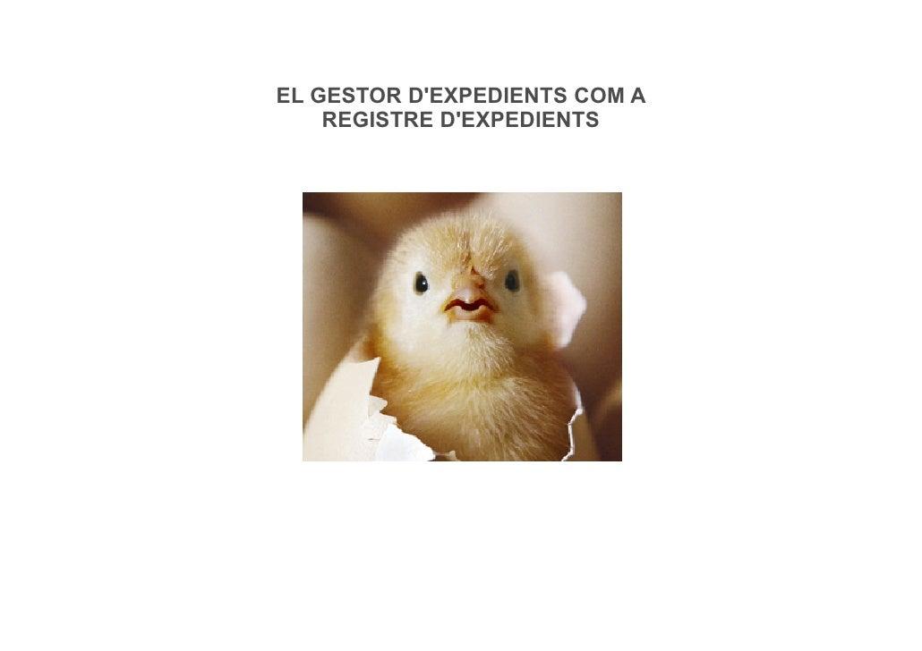 EL GESTOR DEXPEDIENTS COM A    REGISTRE DEXPEDIENTS