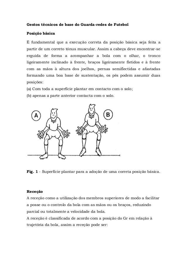 Gestos técnicos de base do Guarda-redes de Futebol Posição básica É fundamental que a execução correta da posição básica s...