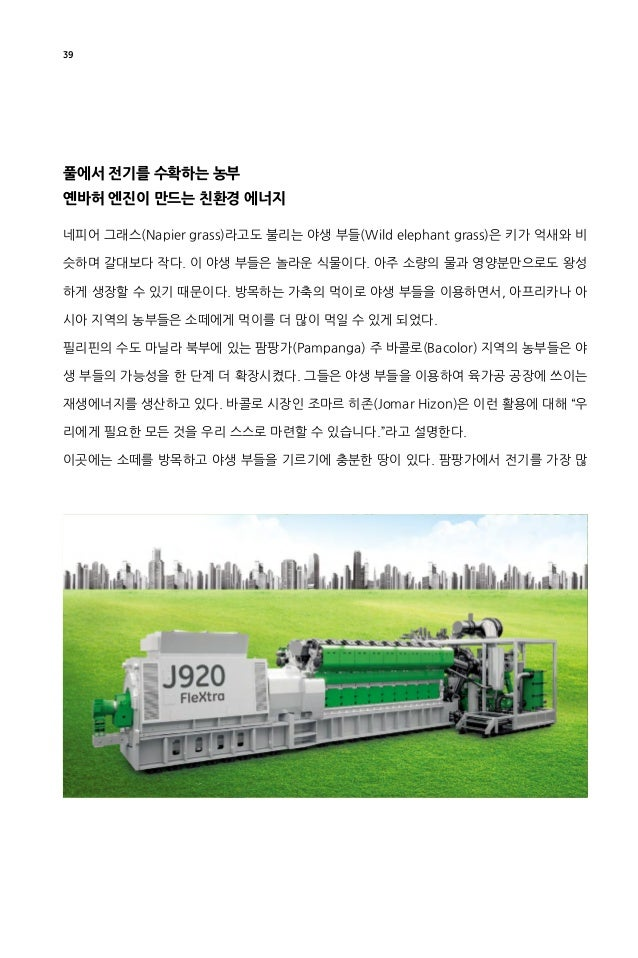 """40 이 소비하는 육가공 공장은 야생 부들로 만든 에너지를 사용한다. 히존 시장은 야생 부들을 이용 한 재생에너지 발전소를 마치 """"3점 슛"""" 같다고 표현한다. 팜팡가에서 자라는 야생 부들은 """"슈퍼 부들(Super Nap..."""