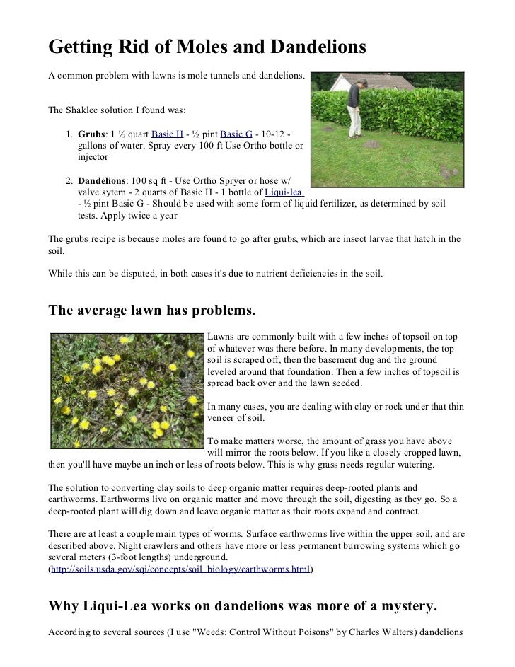 Getting Rid of Moles and DandelionsA common problem with lawns is mole tunnels and dandelions.The Shaklee solution I found...