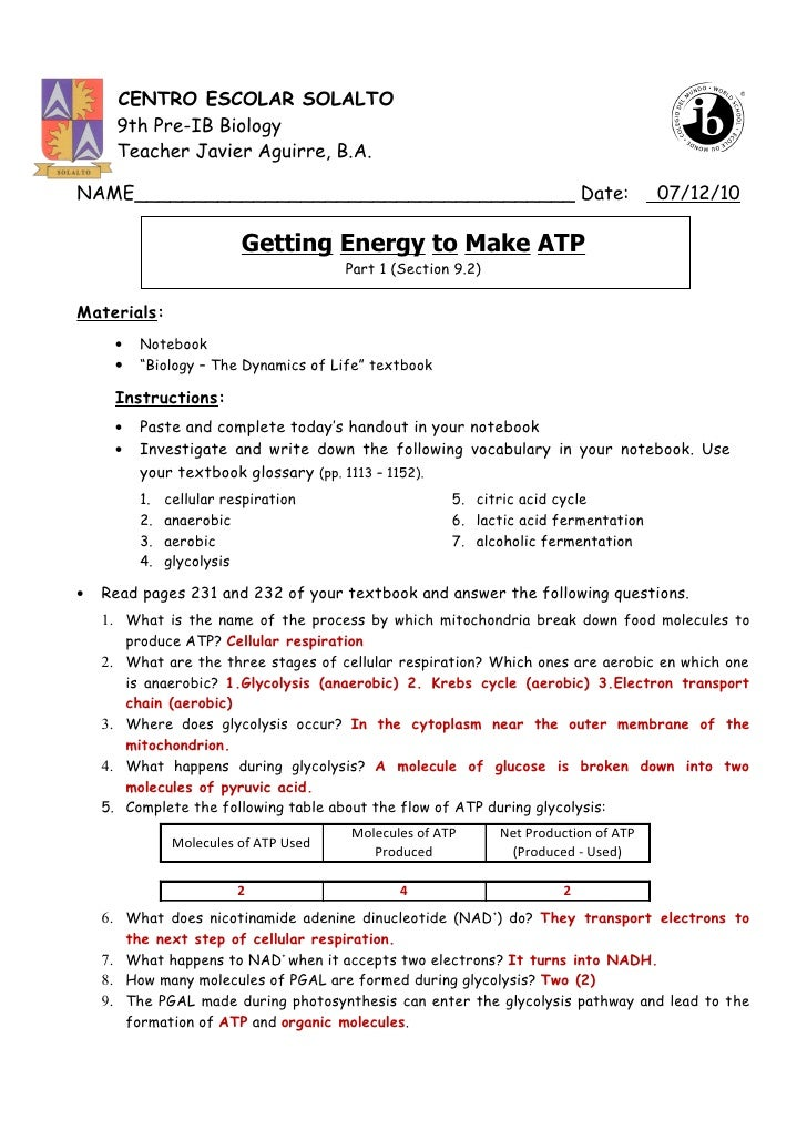 Printables Atp Worksheet getting energy to make atp part 1 pp 231 226 answer key