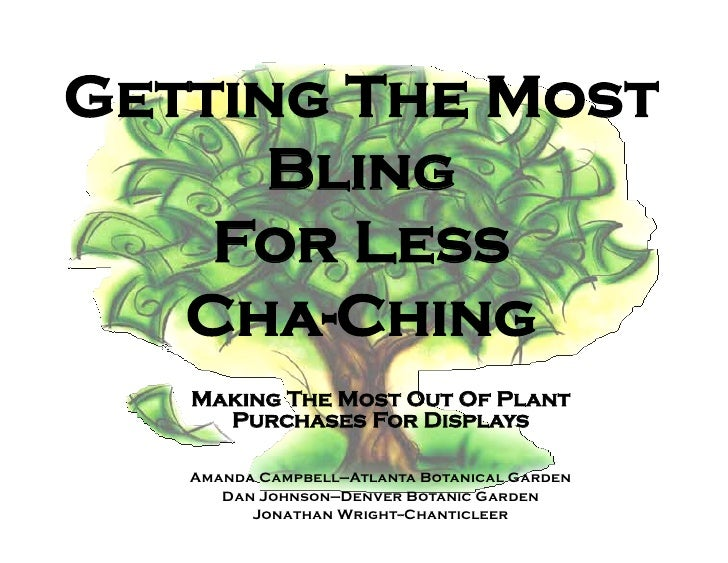 Getting The Most       Bling     For Less    Cha-Ching    Making The Most Out Of Plant      Purchases For Displays     Ama...