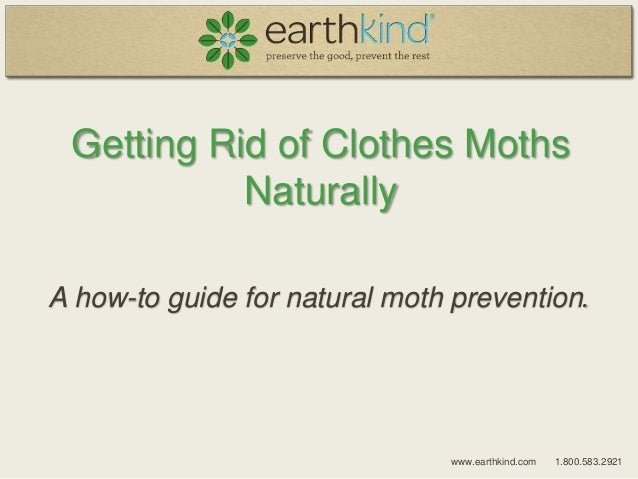www.earthkind.com 1.800.583.2921 Getting Rid of Clothes Moths Naturally A how-to guide for natural moth prevention.