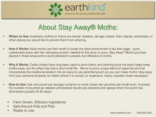How To Get Rid Of Moths Natural Way