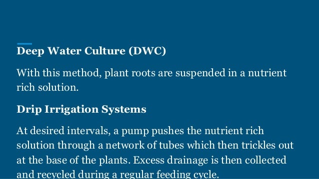 Deep Water Culture (DWC) With this method, plant roots are suspended in a nutrient rich solution. Drip Irrigation Systems ...