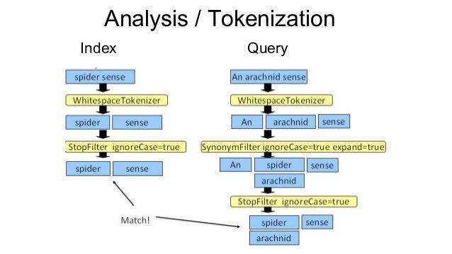 Index Query Analysis / Tokenization