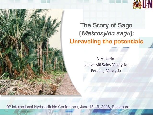 The Story of Sago (Metroxylon sagu): Unraveling the potentials A.  A.  Karim   Universi.  Sains  Malaysia   Pe...