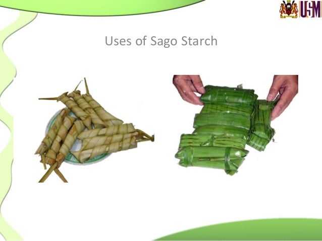 • The  bark  as  housing   materials         Useful  parts  of  sago  palm