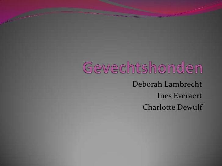 Gevechtshonden Deborah Lambrecht InesEveraert Charlotte Dewulf