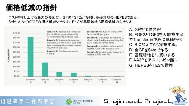 価格低減の指針 コストを押し上げる最大の要因は、 GFのFGF2とTGFβ、基礎培地のHEPESである。 シナリオA~DがGFの価格低減シナリオ、 E~Gが基礎培地も価格低減のシナリオ A. GFを10倍希釈 B. FGF2とTGFβを大規模生...