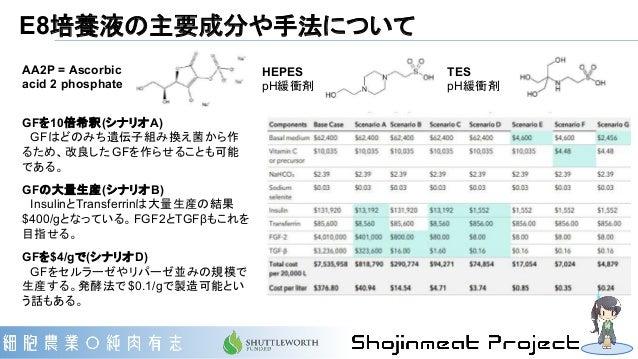 E8培養液の主要成分や手法について AA2P = Ascorbic acid 2 phosphate HEPES pH緩衝剤 TES pH緩衝剤 GFを10倍希釈(シナリオA)  GFはどのみち遺伝子組み換え菌から作 るため、改良したGFを作ら...