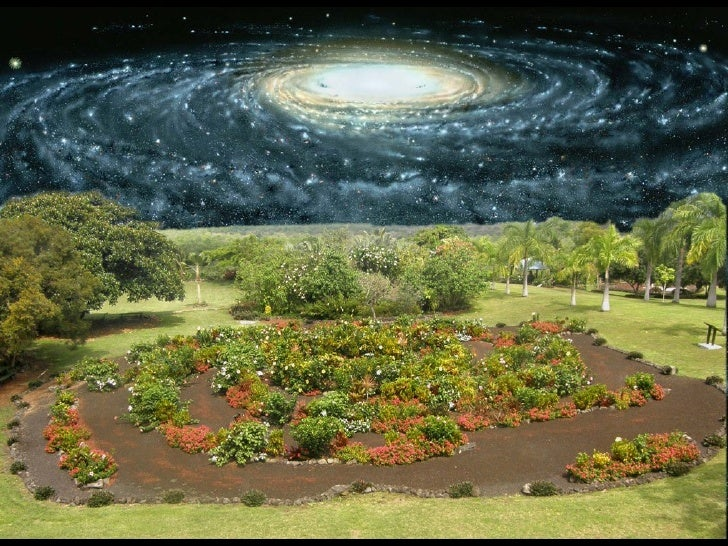 THE GALAXY GARDENA New Way of Exploring the Milky Way
