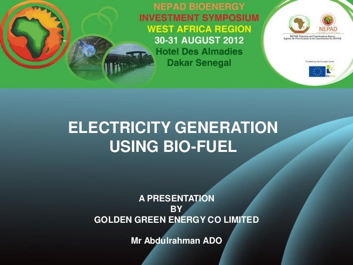 ELECTRICITY GENERATION    USING BIO-FUEL          A PRESENTATION                BY  GOLDEN GREEN ENERGY CO LIMITED        ...