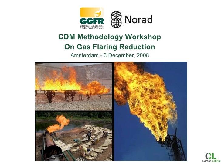 CDM Methodology Workshop On Gas Flaring Reduction Amsterdam - 3 December, 2008