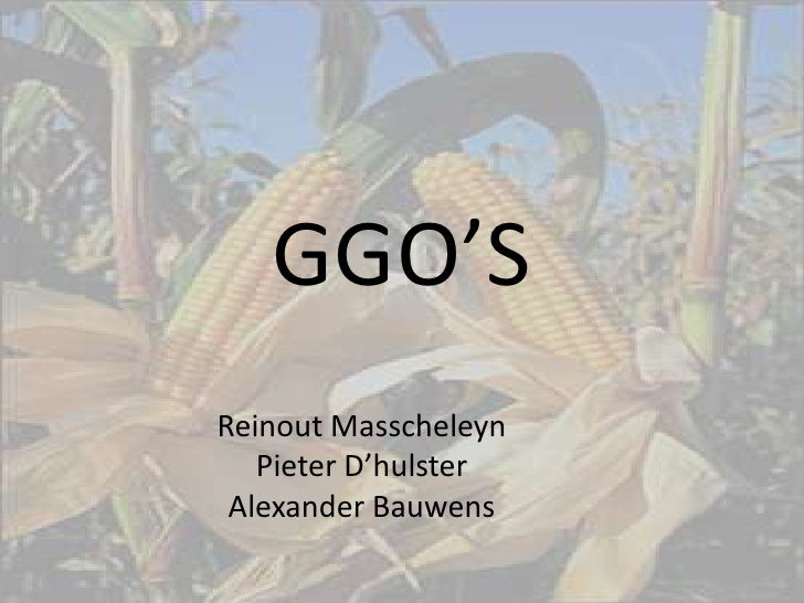 GGO'S<br />Reinout Masscheleyn <br />Pieter D'hulster <br />Alexander Bauwens <br />