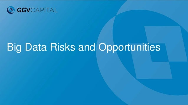 Big Data Risks and Opportunities