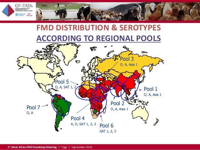 1st West Africa Foot and Mouth Disease Roadmap Meeting