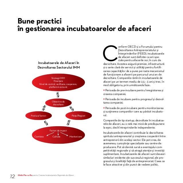 Liniile directoare și cele mai bune practici privind incubatoarele de afaceri sugerate de FEED și NIAA sunt formulate după...