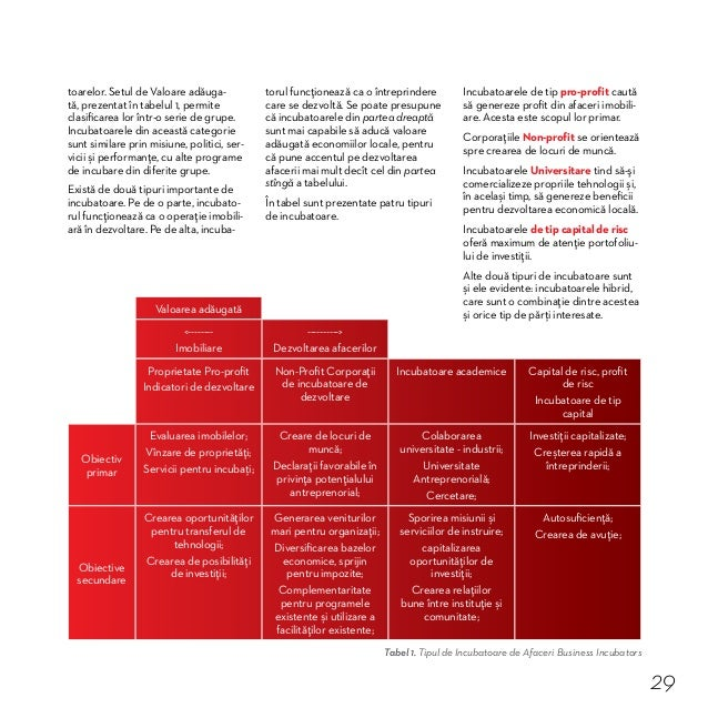 Studiu de caz 4. Cum s-au implicat factorii de decizie în organizarea Incubatorului de Afaceri din Soroca În proiectul Ent...