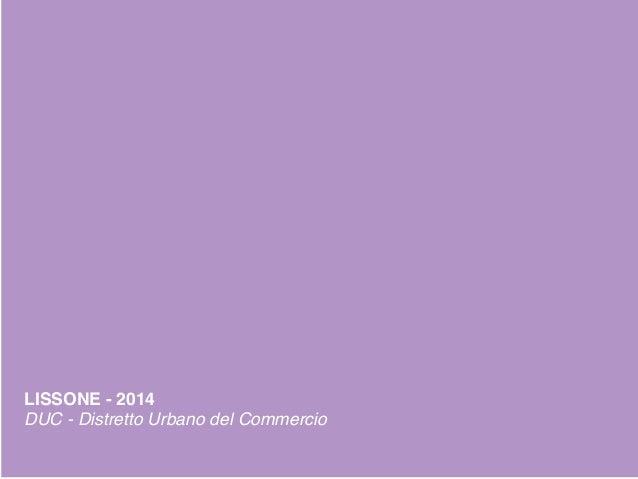 530/11/2013 DUC LISSONE