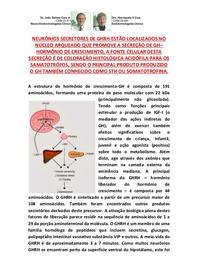 NEURÔNIOS SECRETORES DE GHRH ESTÃO LOCALIZADOS NO NÚCLEO ARQUEADO QUE PROMOVE A SECREÇÃO DE GH– HORMÔNIO DE CRESCIMENTO, A...