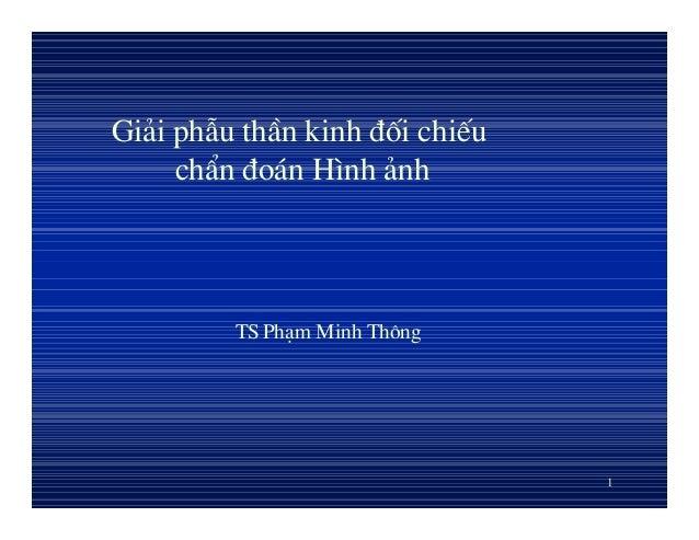 1 Gi¶i phÉu thÇn kinh ®èi chiÕu chÈn ®o¸n H×nh ¶nh TS Ph¹m Minh Th«ng