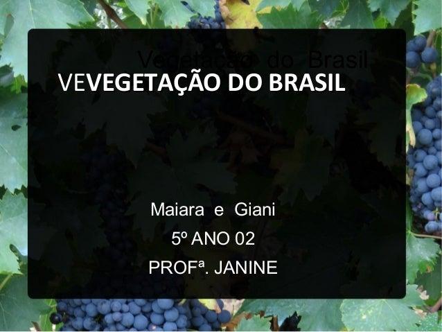 Vegetação do BrasilMaiara e Giani5º ANO 02PROFª. JANINEVEVEGETAÇÃO DO BRASILVEGETAÇÃO DO BRASIL