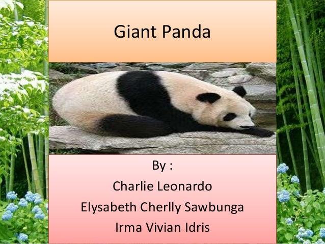 Giant Panda By : Charlie Leonardo Elysabeth Cherlly Sawbunga Irma Vivian Idris