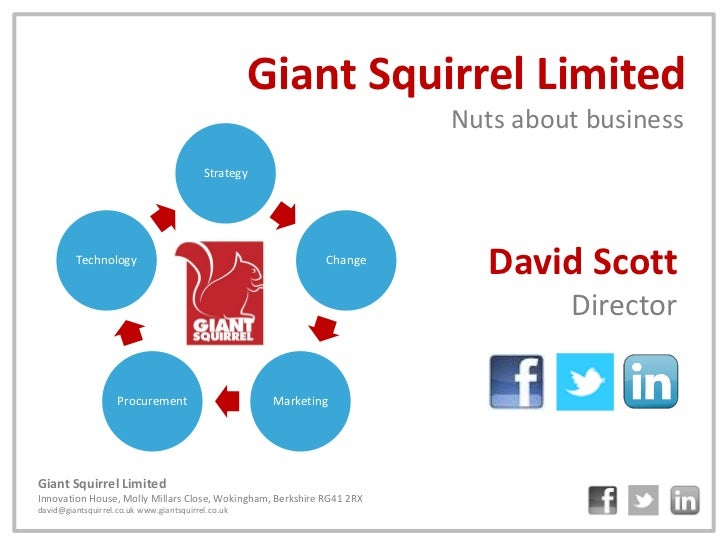 Giant Squirrel Limited                                                                       Nuts about business          ...