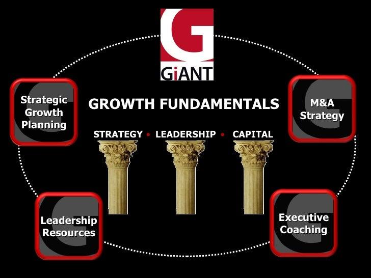 Strategic  Growth             GROWTH FUNDAMENTALS                    M&A                                                  ...