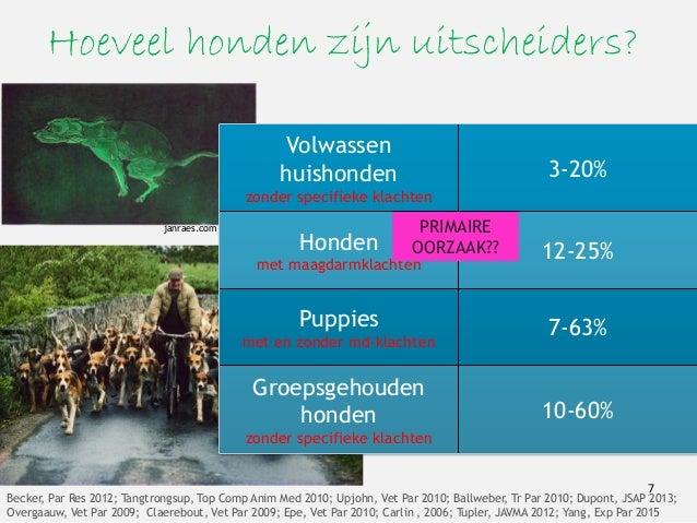 Hoeveel honden zijn uitscheiders? Volwassen huishonden zonder specifieke klachten 3-20% Honden met maagdarmklachten 12-25%...