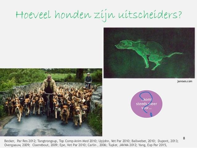 Hoeveel honden zijn uitscheiders? Becker, Par Res 2012; Tangtrongsup, Top Comp Anim Med 2010; Upjohn, Vet Par 2010; Ballwe...