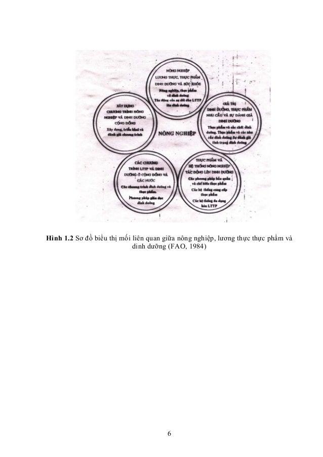 6 Hình 1.2 Sơ đồ biểu thị mối liên quan giữa nông nghiệp, lương thực thực phẩm và dinh dưỡng (FAO, 1984)