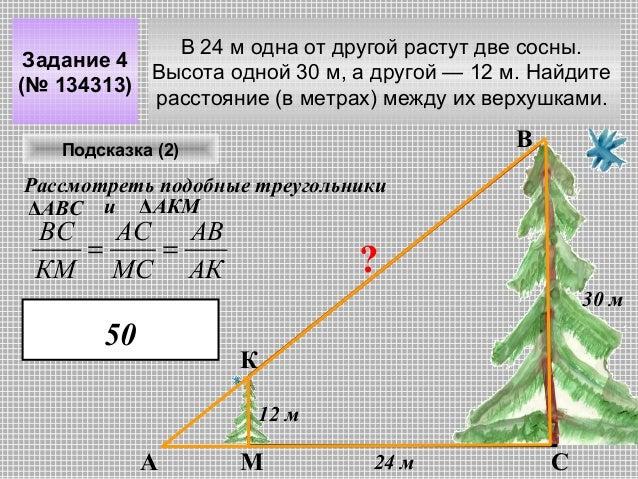В 24 м одна от другой растут две сосны. Задание 4 Высота одной 30 м, а другой — 12 м. Найдите (№ 134313) расстояние (в мет...