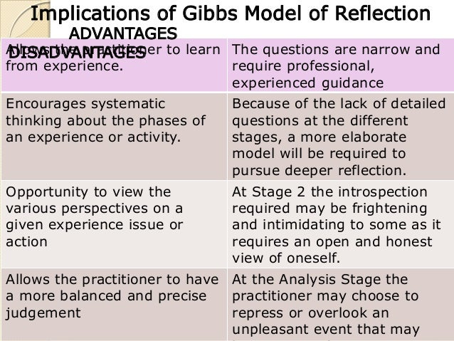 essay using gibbs model reflection