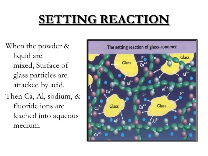 SETTING REACTIONWhen the powder &  liquid are  mixed, Surface of  glass particles are  attacked by acid.Then Ca, Al, sodiu...