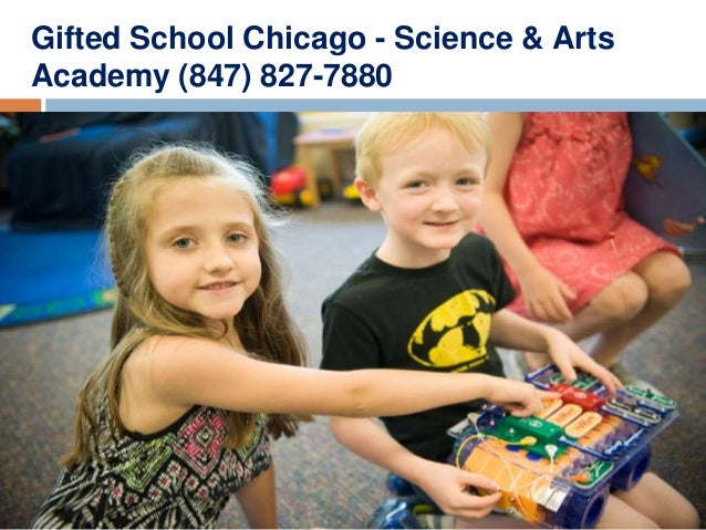 Gifted School Chicago - Science & Arts Academy (847) 827-7880