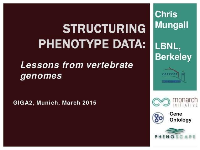 GIGA2, Munich, March 2015 STRUCTURING PHENOTYPE DATA: Chris Mungall LBNL, Berkeley Gene Ontology Lessons from vertebrate g...