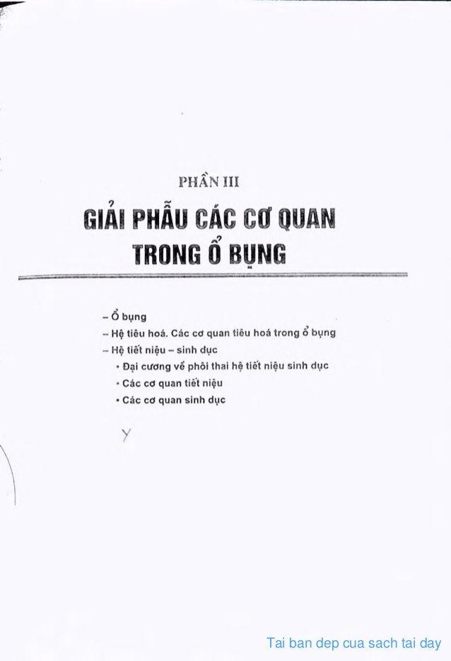 Tai ban dep cua sach tai day