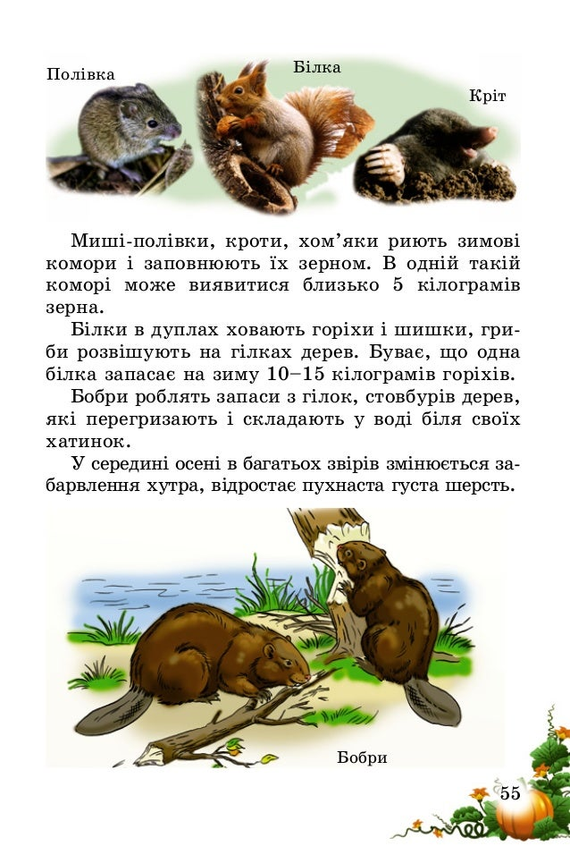 56 Зміни забарвлення і густоти хутра у тварин називають линянням. У білки влітку хутро руде, не помітне поміж стовбурів хв...