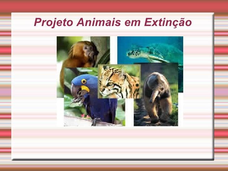 Projeto Animais em Extinção